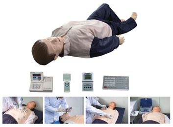 Adult Advanced Cardiac Life Support Training Manikin