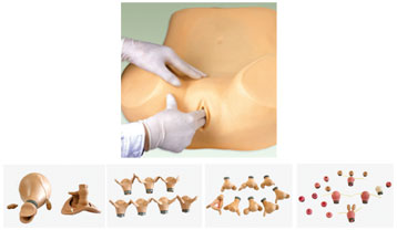 Advanced Gynecological Training Models