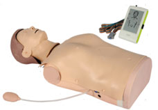 Advanced Half-Body CPR Training Manikin with Monitor