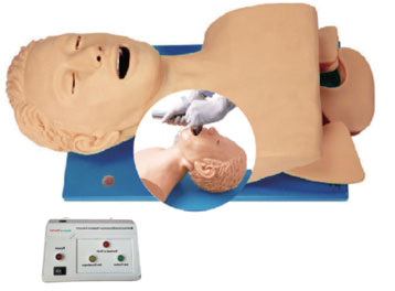 Airway Intubation Model