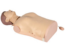 Half-Body CPR Training Manikin